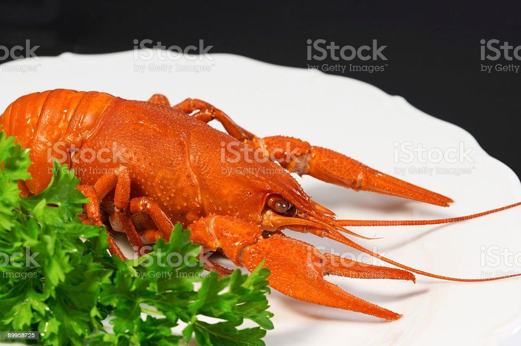 crayfish on plate (black background) royalty-free stock photo