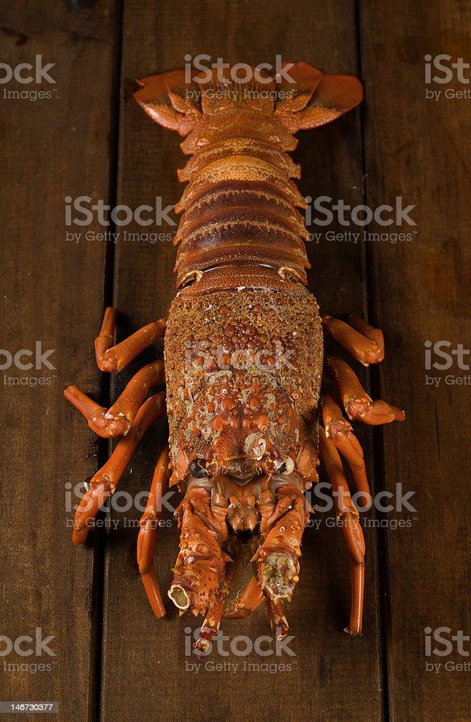 Crayfish on table royalty-free stock photo
