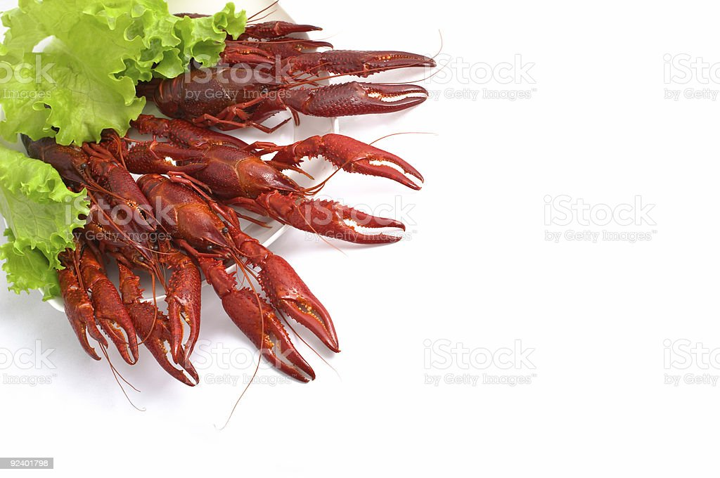 Crayfish party royalty-free stock photo