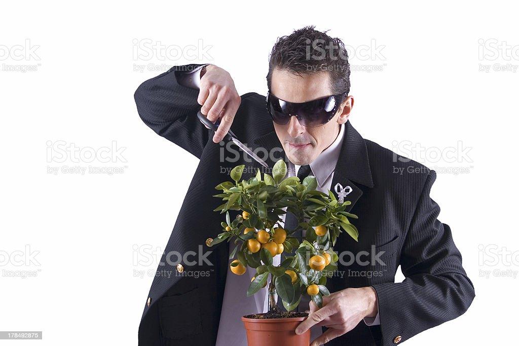 Crazy gardener #3 royalty-free stock photo