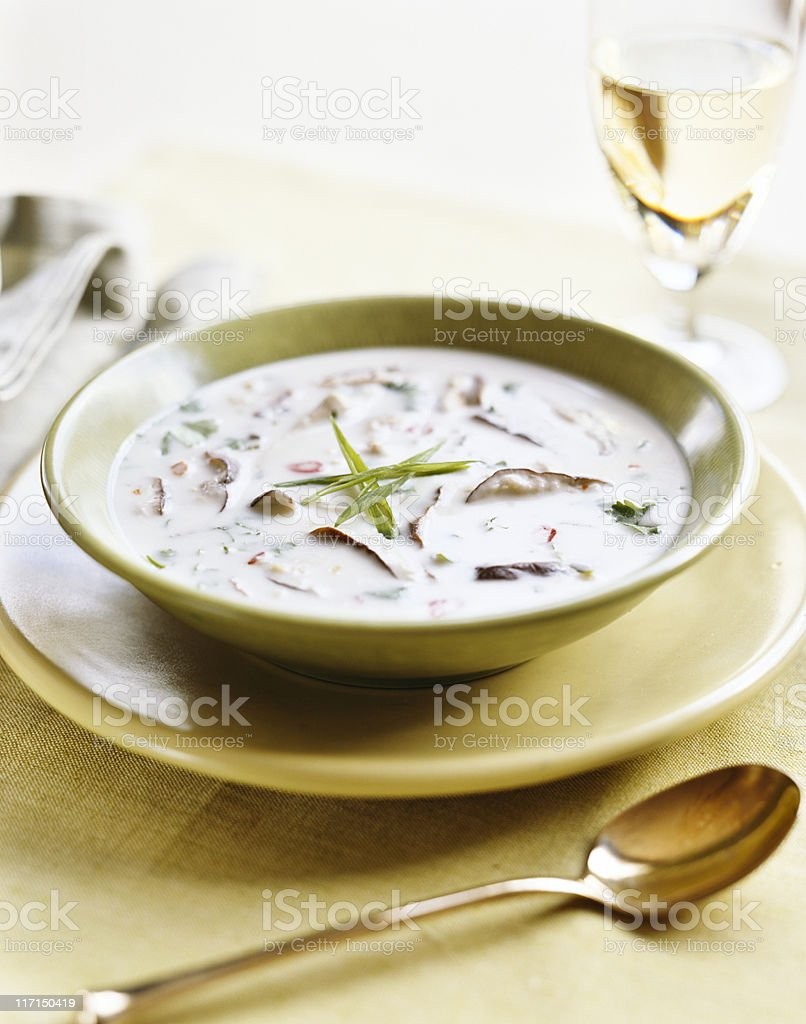 Cream of Mushroom Soup royalty-free stock photo