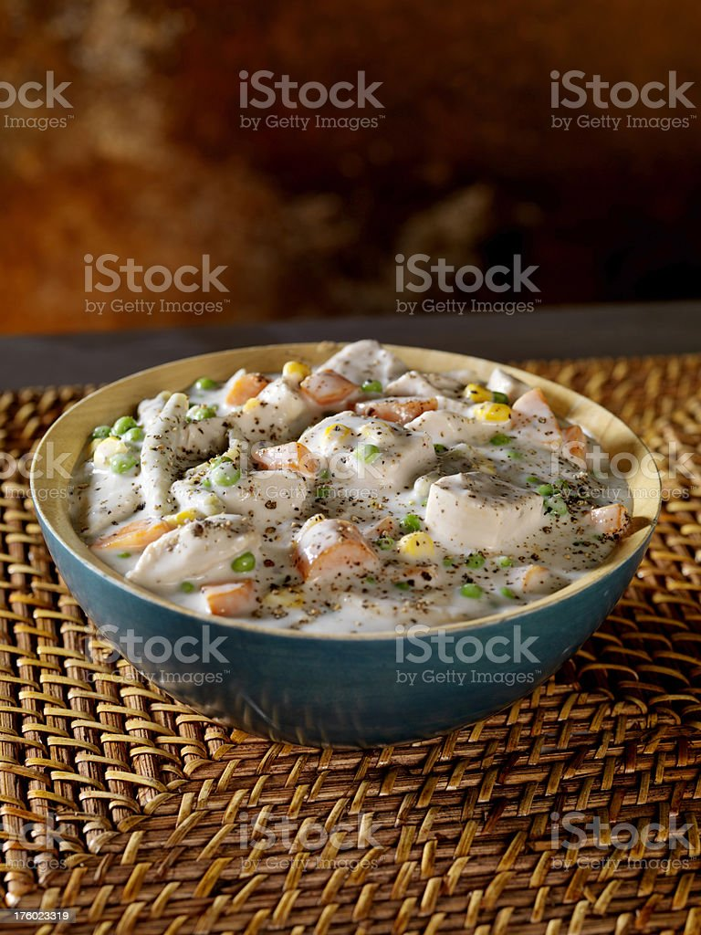 Creamy Chicken and Vegetable Casserole 2 stock photo
