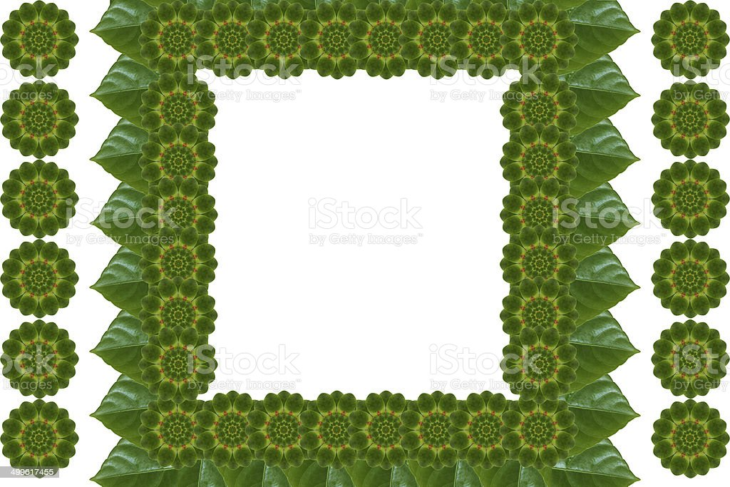 Create a pattern  from leaf royalty-free stock photo