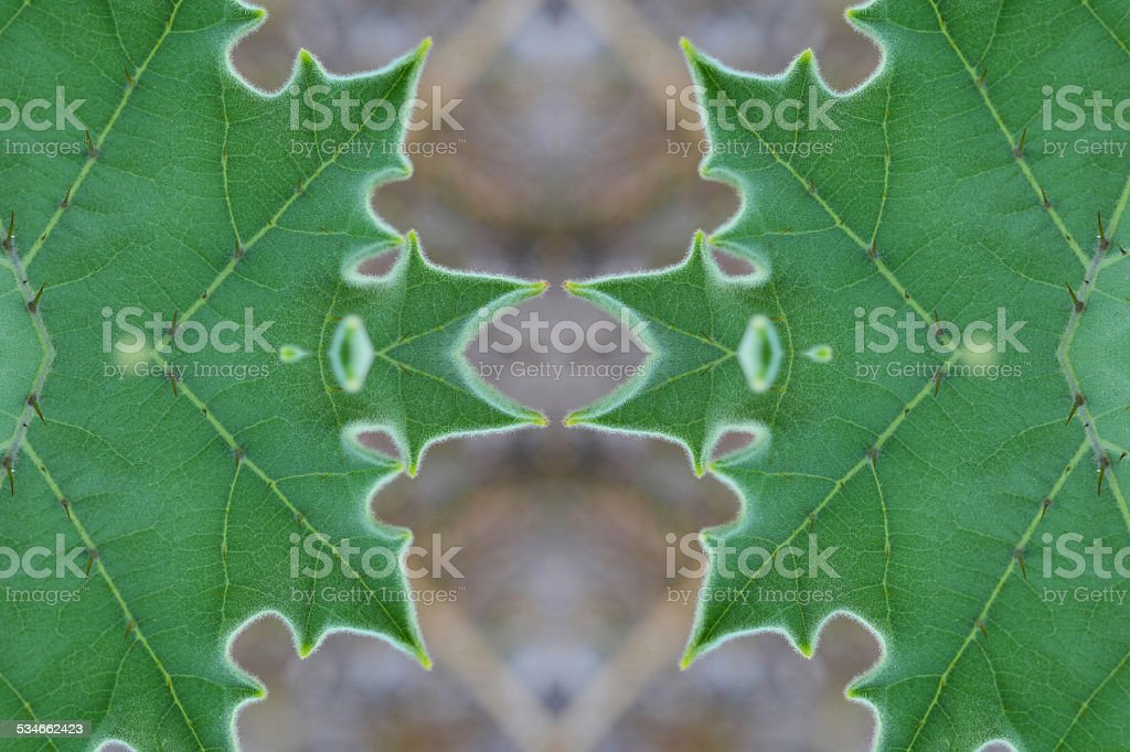 Create from leaf.(wallpaper concept) stock photo