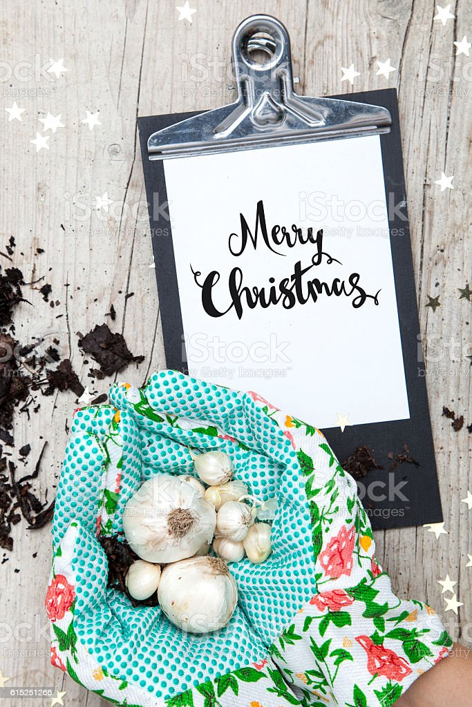 Creative Christmas Card for a garden business stock photo