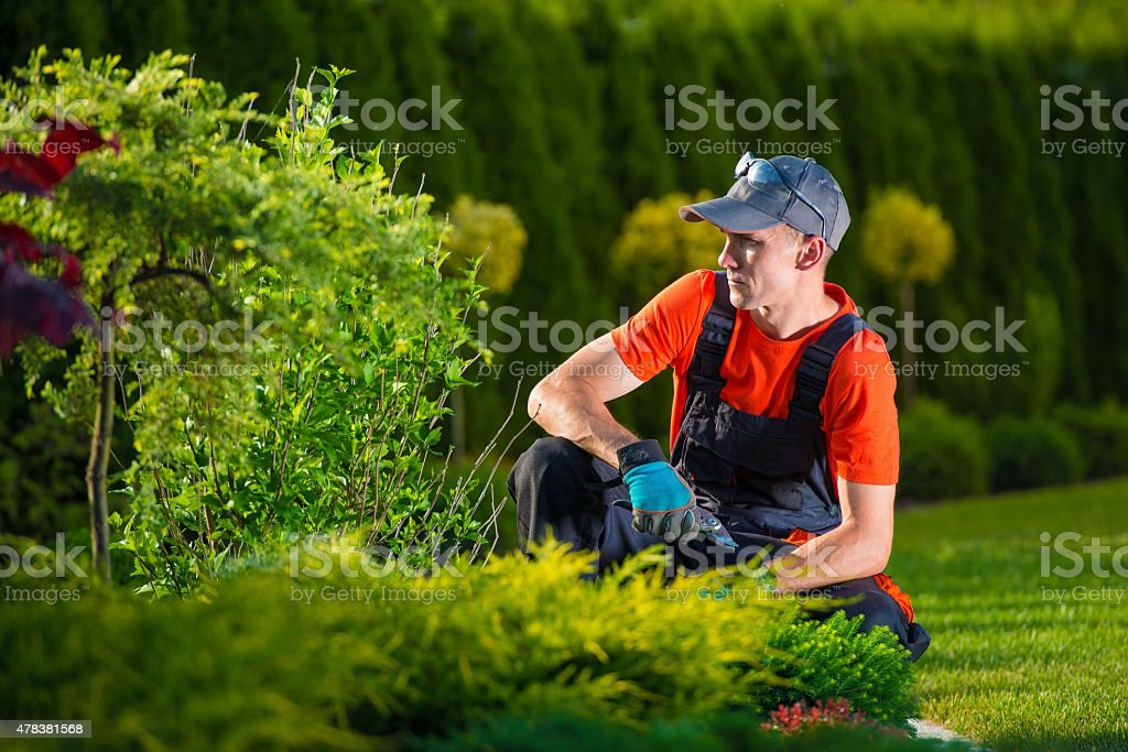 Creative Garden Designer stock photo