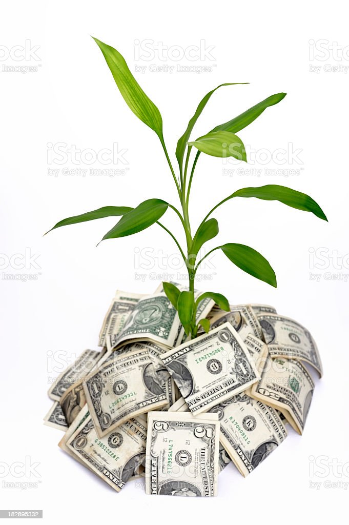 creative wealth growth royalty-free stock photo