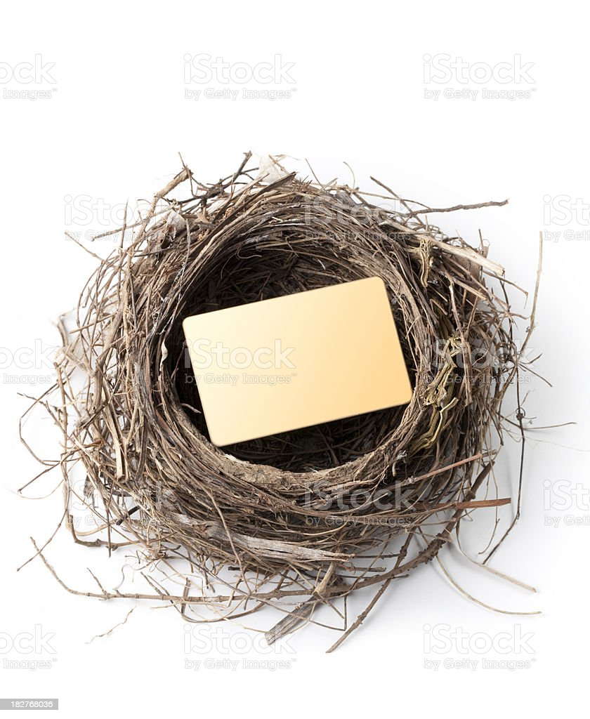 Credit card in the nest royalty-free stock photo