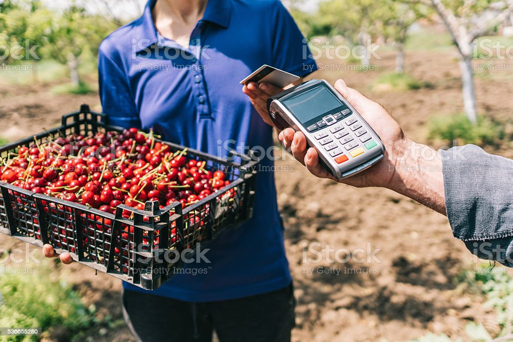 Credit card payment on the farmer's market stock photo