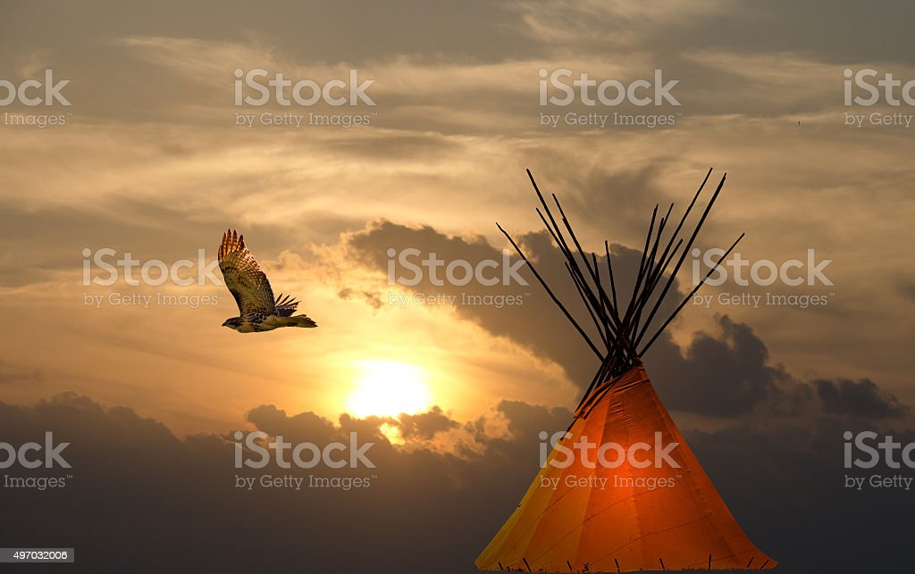 Cree teepee and golden prairie sunset with hawk stock photo