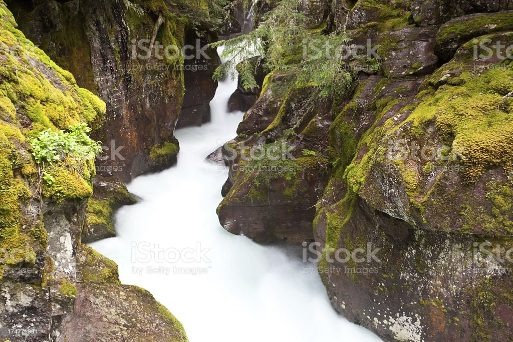 Creek and Canyon royalty-free stock photo