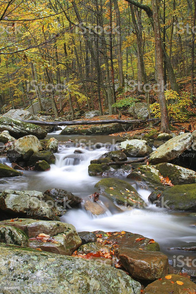 Creek During Fall royalty-free stock photo