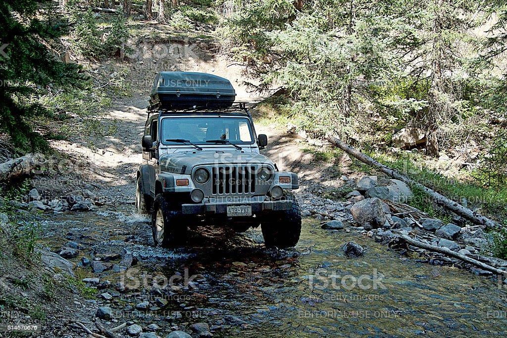 Creek Encounter stock photo