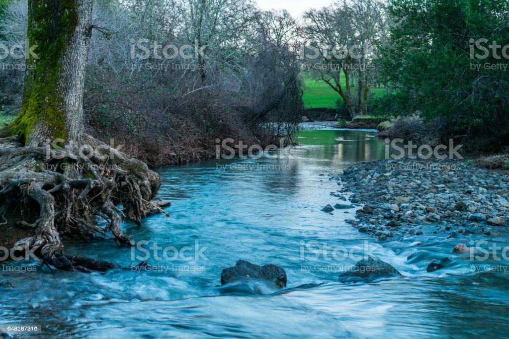 Creek Flowing Toward Distance stock photo