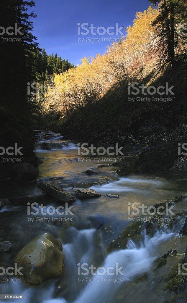 Creek in Fall royalty-free stock photo
