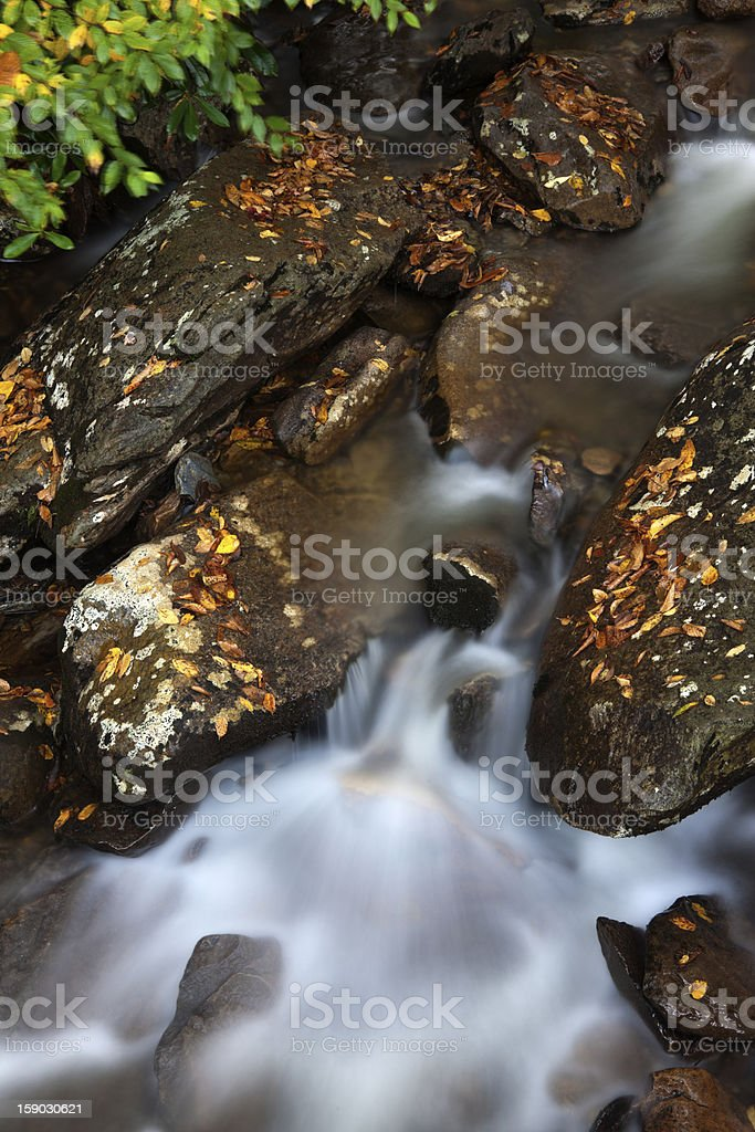 Creek in Smoky Mountains National Park royalty-free stock photo