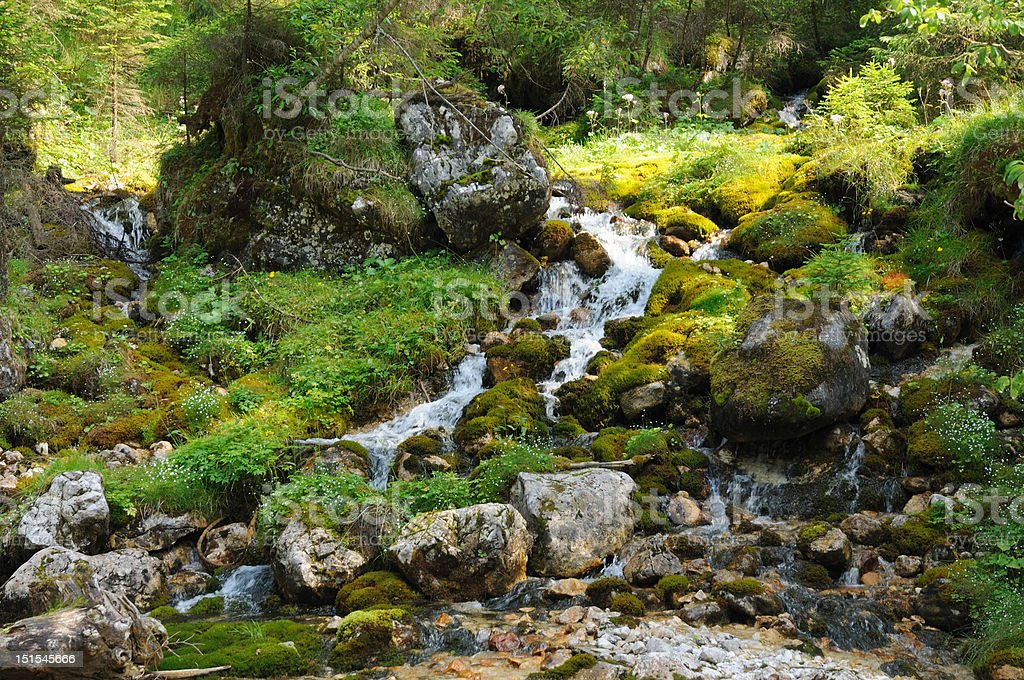 Creek in the Alps royalty-free stock photo