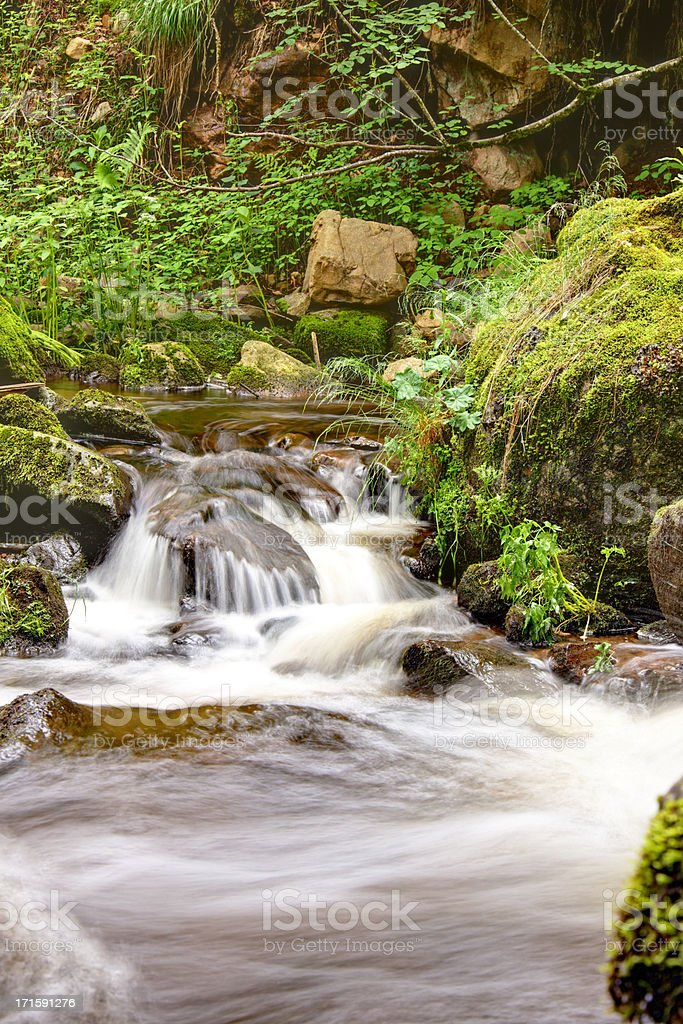 creek in the Black Forest / Germany royalty-free stock photo
