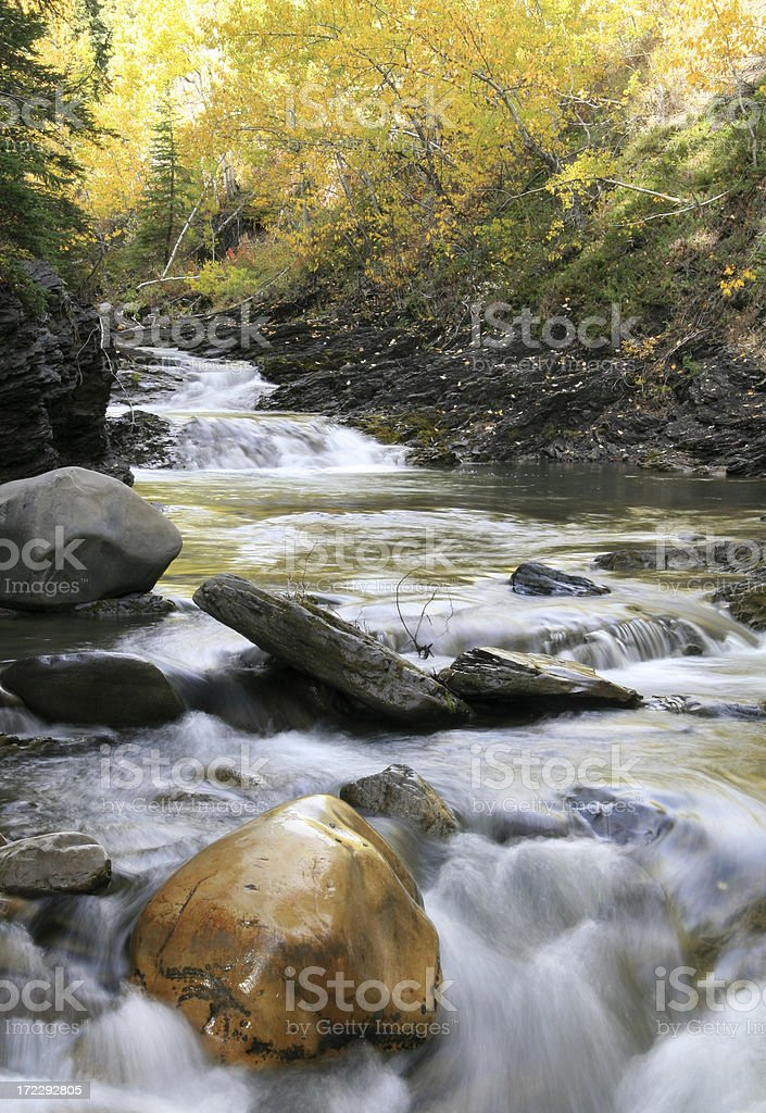 Creek in the Fall royalty-free stock photo