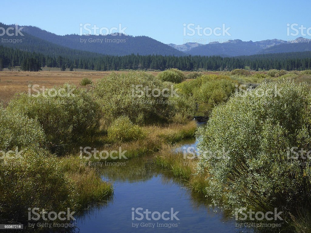 Creek in the high chaparral stock photo
