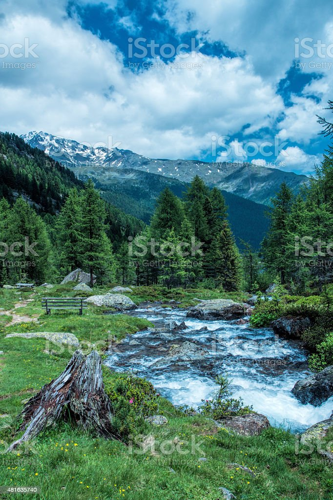 creek in the mountains stock photo