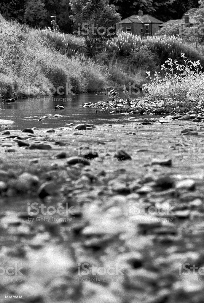 Creek in the woods, with a House on the river stock photo
