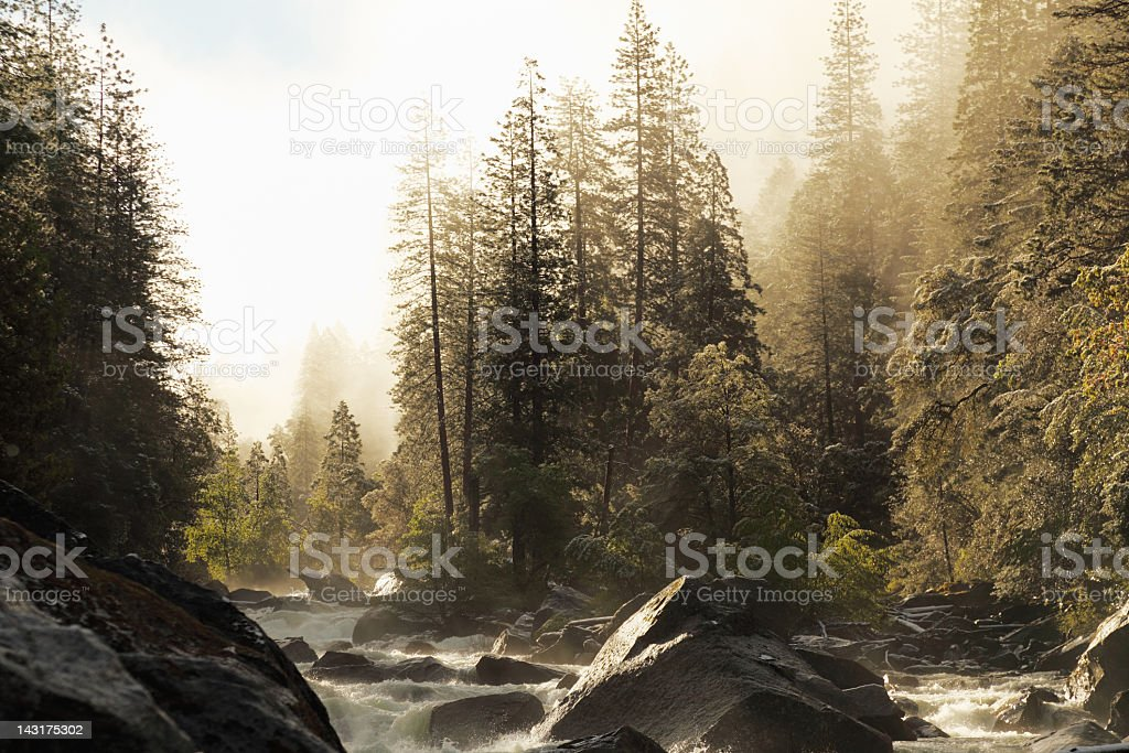 creek in Yosemite Park valley during spring below foggy sky royalty-free stock photo