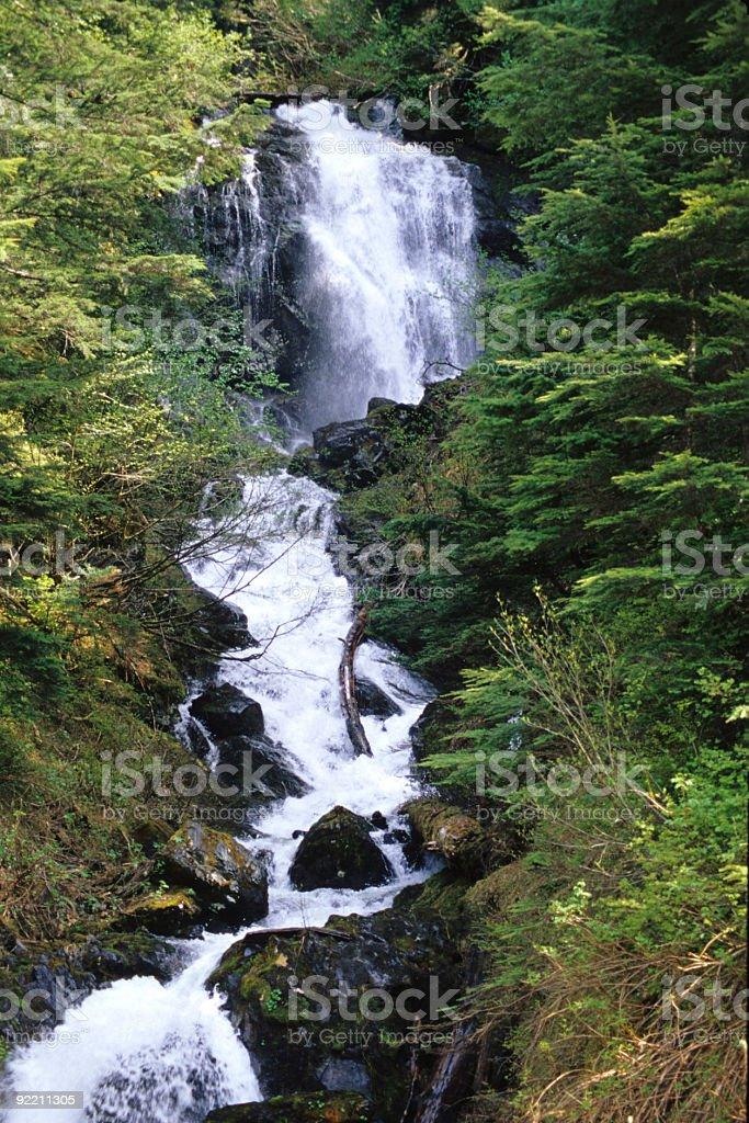 Creek near Hyder, Alaska stock photo