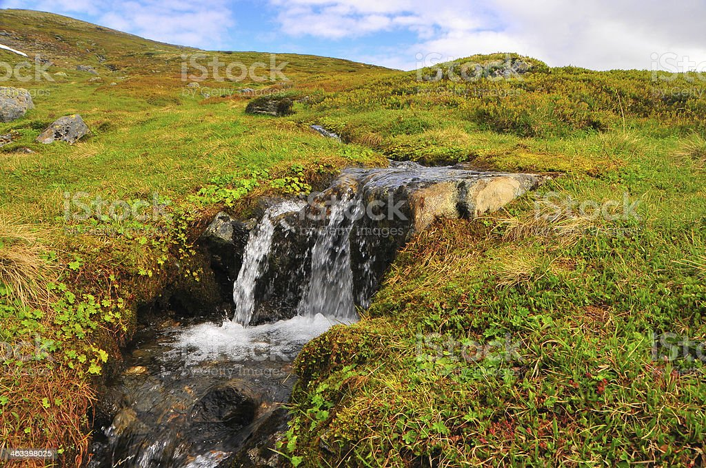 Creek foto royalty-free