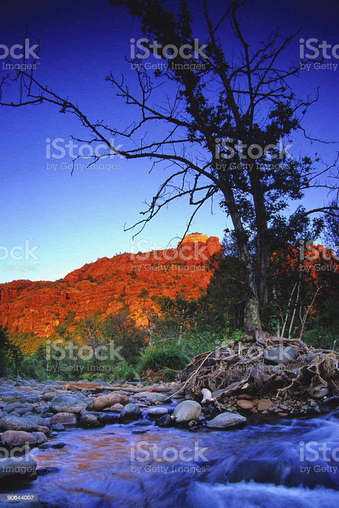 creek tree silhouette and southwest badlands sunset landscape stock photo