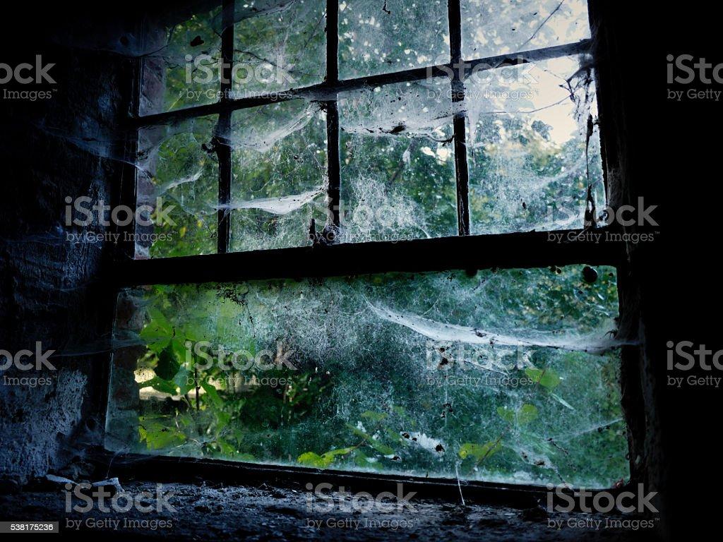 Creepy Cobweb Covered Window stock photo
