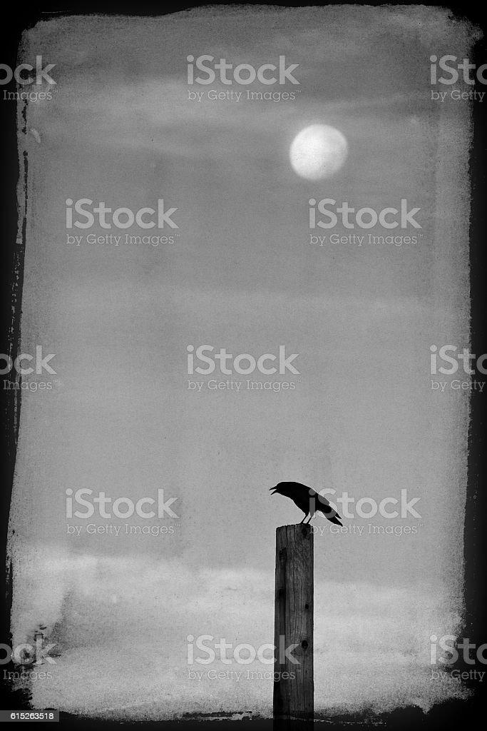 Creepy Midnight Crown Under Moon stock photo