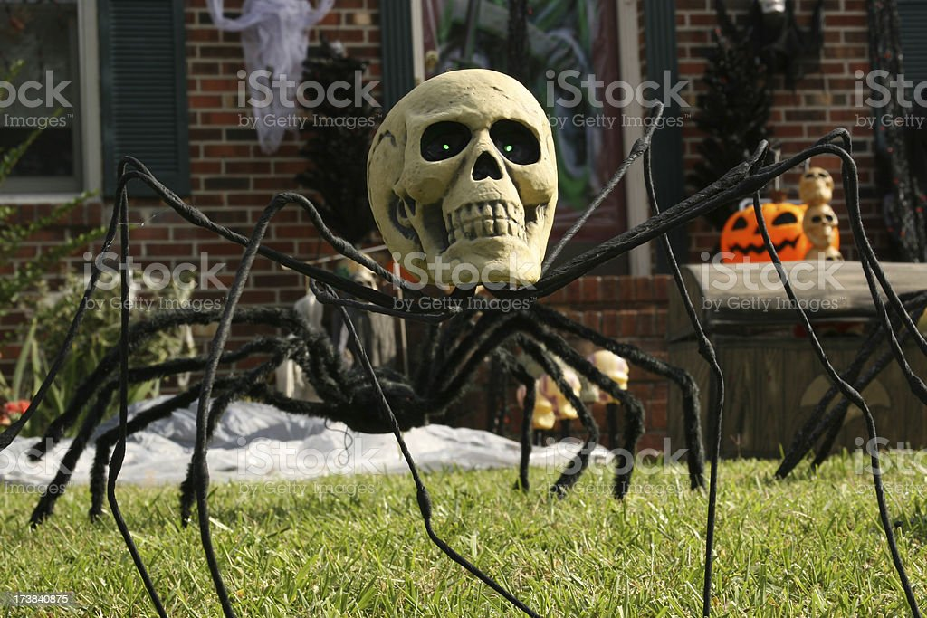 creepy spider with human skull for a head stock photo 173840875, Skeleton