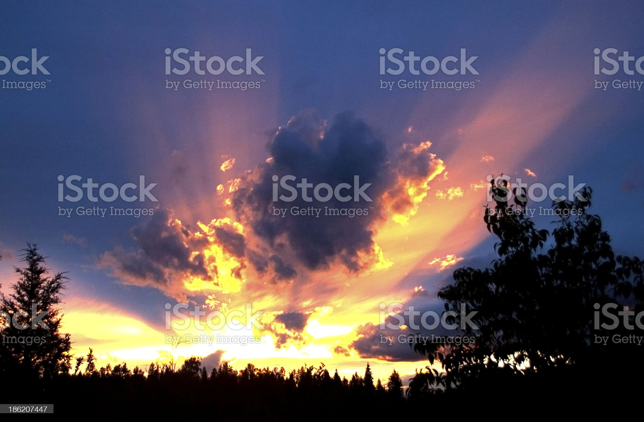 Crepuscular rays at sunset royalty-free stock photo