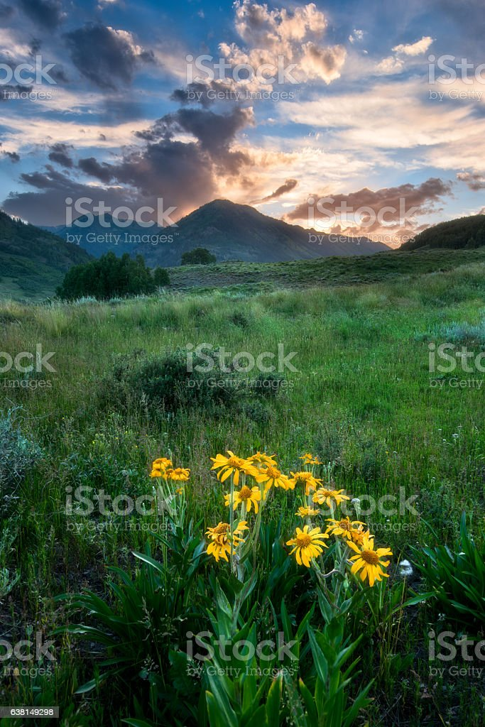 Crested Butte at sunset stock photo