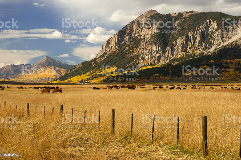 Crested Butte royalty-free stock photo