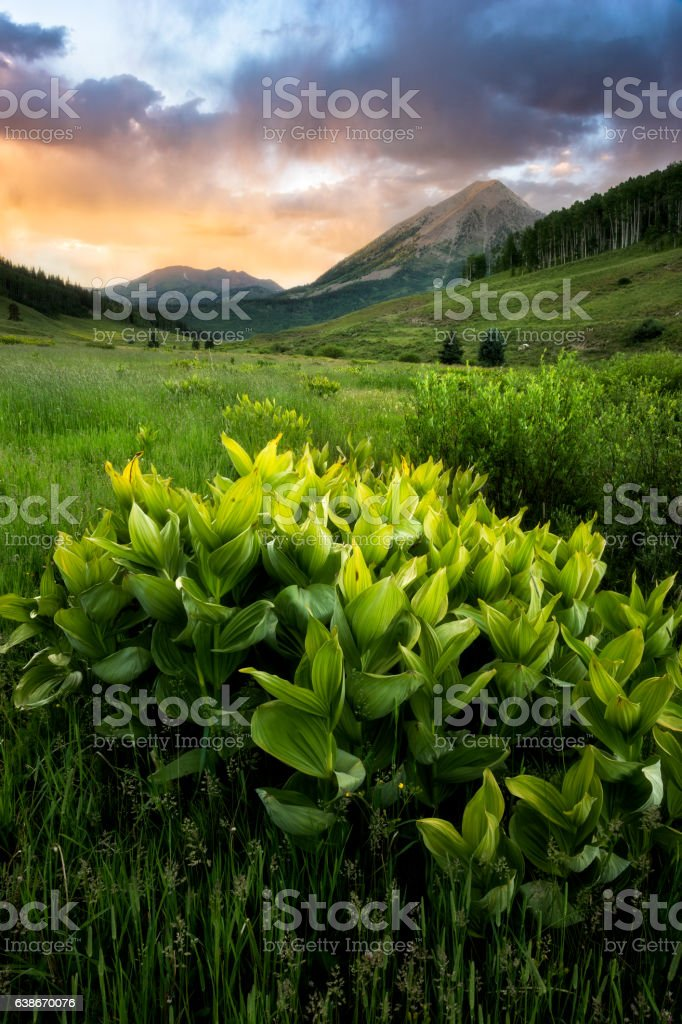 Crested Butte Sunset stock photo