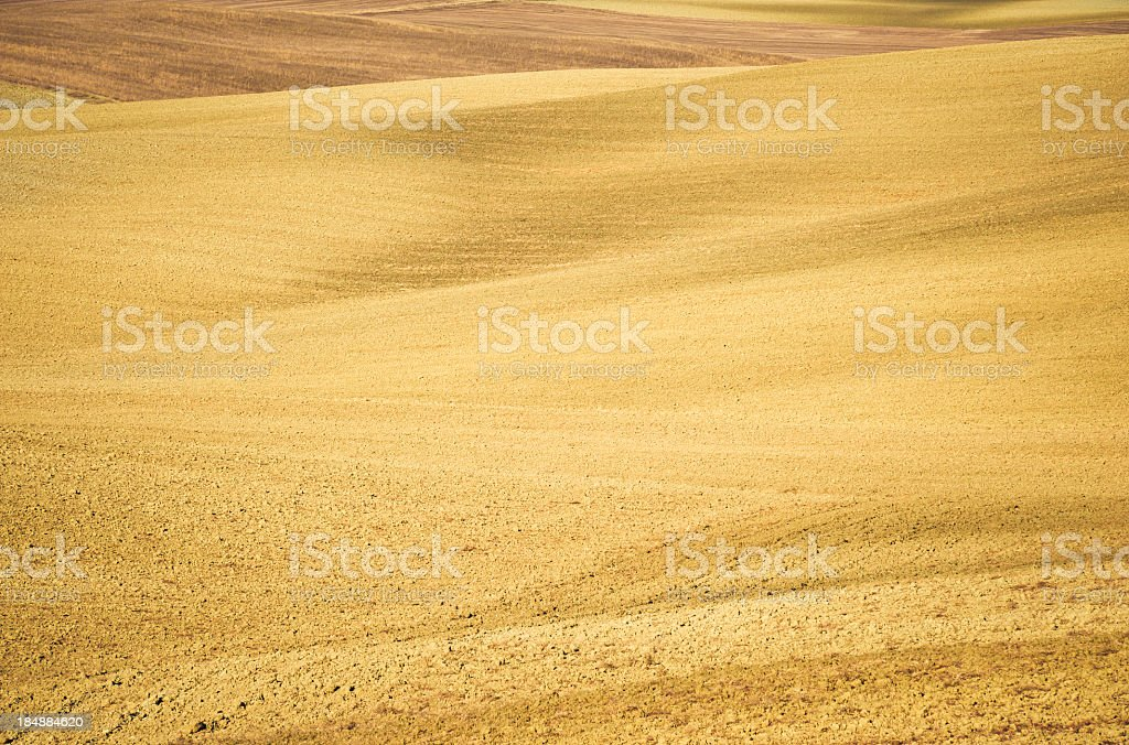 Crete Fields, Val D'Orcia, Tuscany royalty-free stock photo