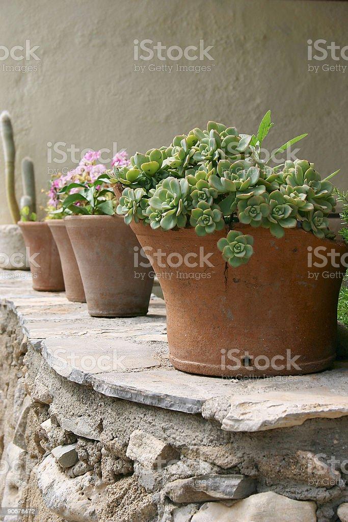 Crete / Flower pots on a wall stock photo