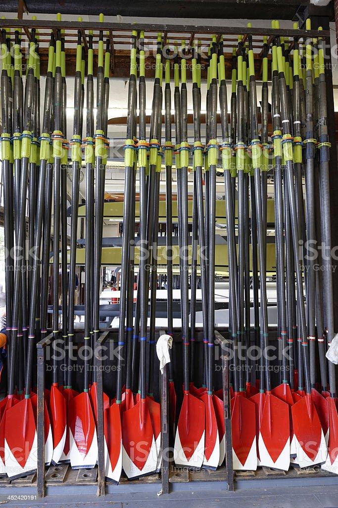 Crew Oars stock photo