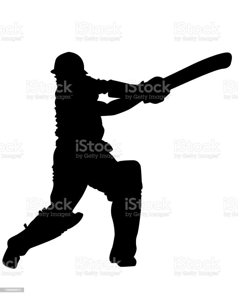 Cricket 05 royalty-free stock photo