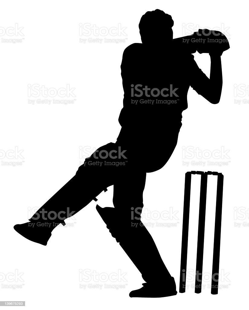 Cricket 1 stock photo