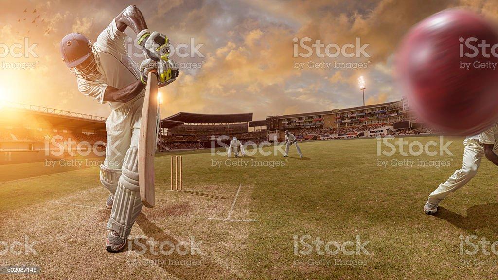 Cricket Action royalty-free stock photo