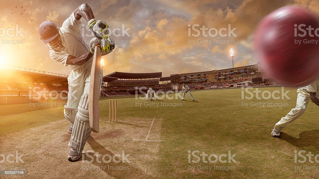 Cricket Action stock photo