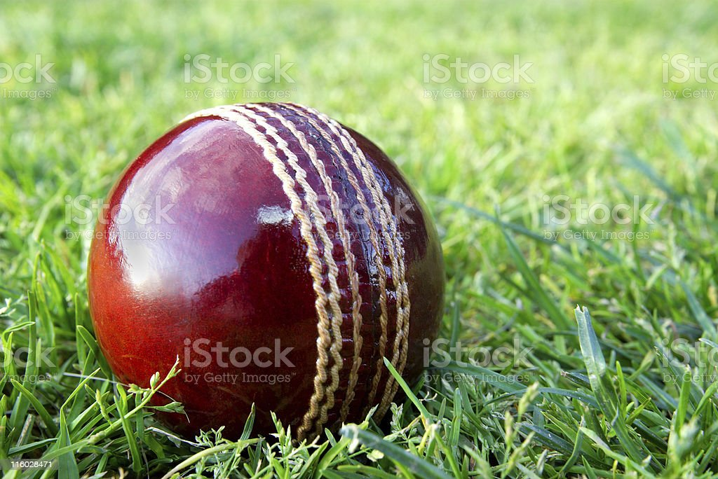 Cricket ball on grass. stock photo