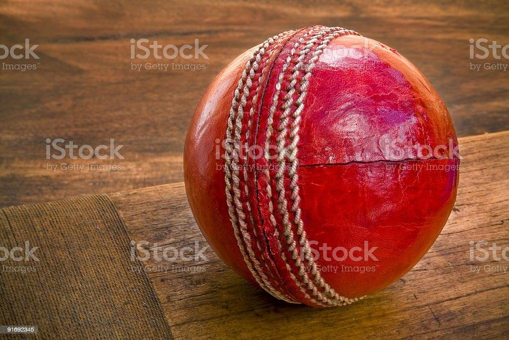Cricket ball on wooden bat