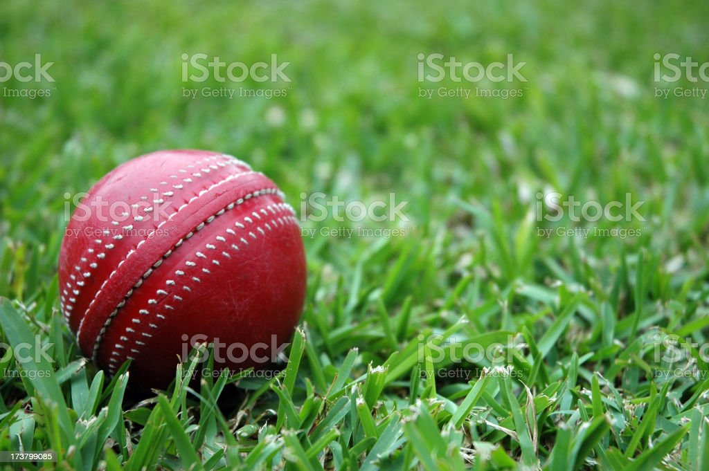 \'slightly worn ball on grass in backyardMore Cricket balls, stumps...