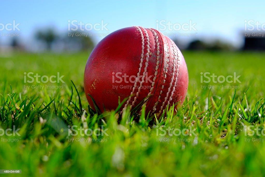Cricket ball stock photo