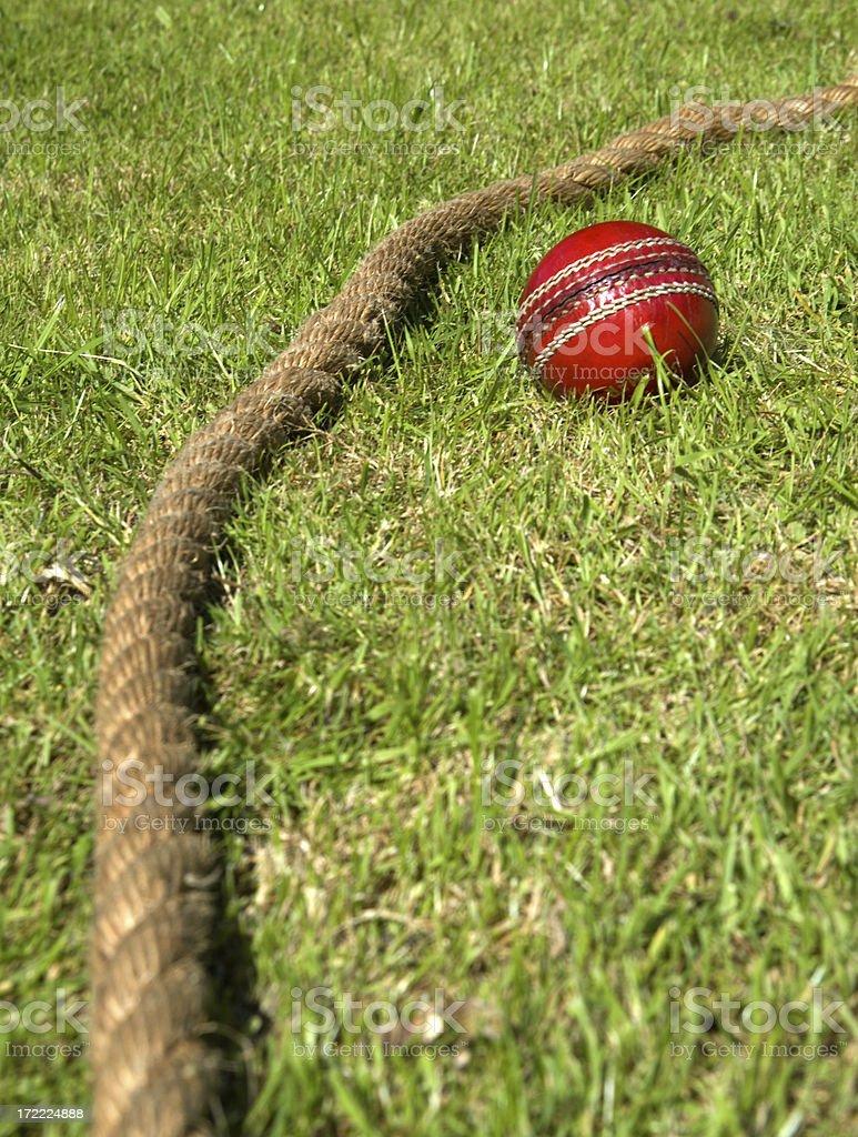 Cricket ball snd boundary rope royalty-free stock photo