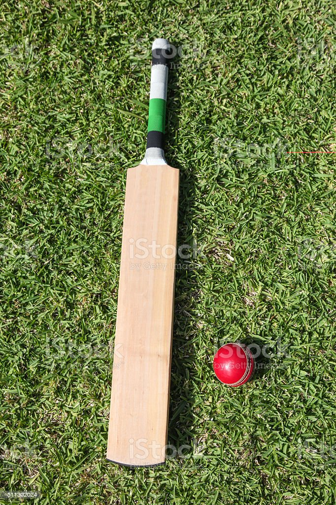 Cricket bat and ball on green grass stock photo